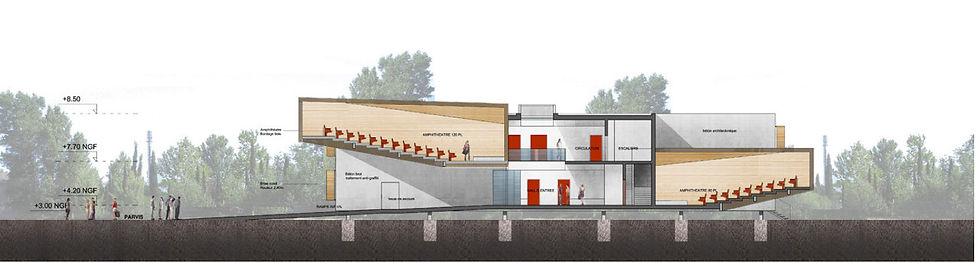 coupe sur équipement scolaire IUP concours construction IUP droit immobilier agence TNT Architecture Paris