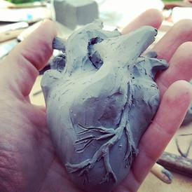 heart in progress