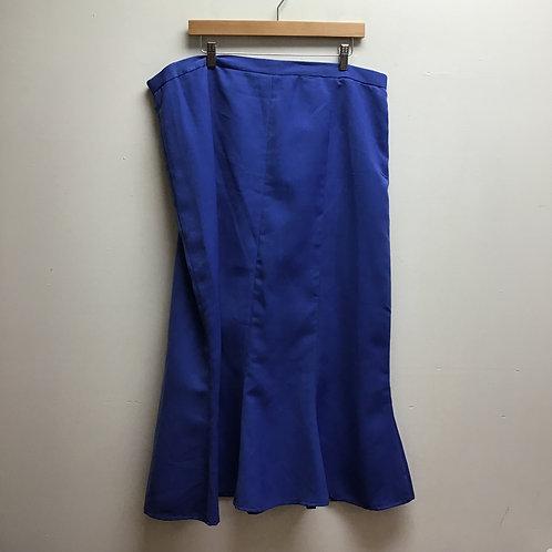 Metrostyle blue skirt
