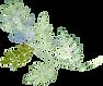 kisspng-plant-download-watercolor-painti