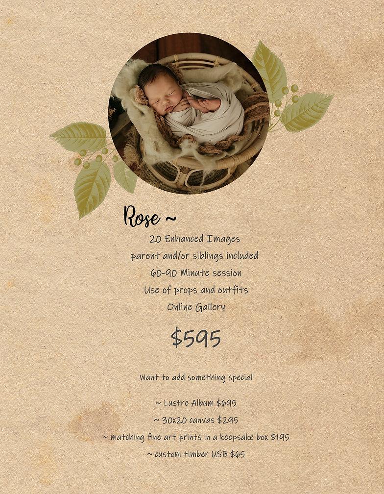 newborn rose .jpg