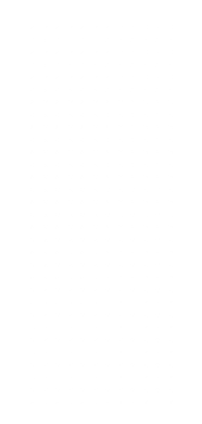white dots vertical.png