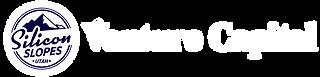 ss-ventures-logos.png