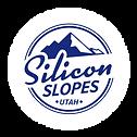 ss logo impact.png