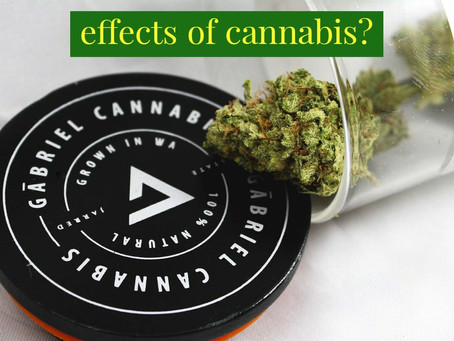 What are the therapeutic effects of cannabis?