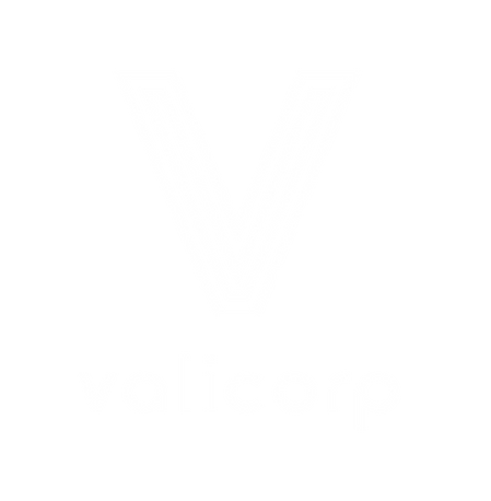 valicorp_logo.png