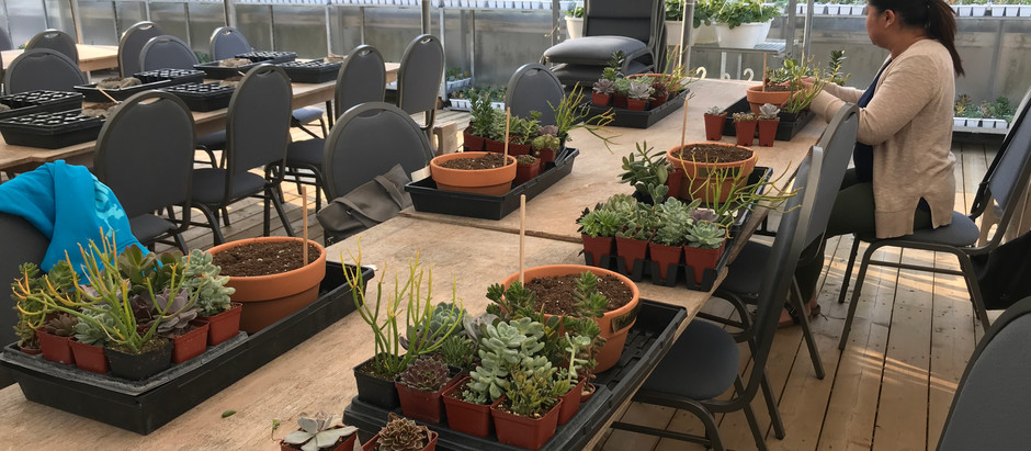 Creating Gardens