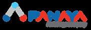 Panaya logo.png