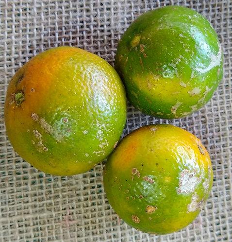 Limão-cravo orgânico (500g)