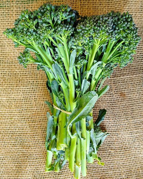 Brócolis ramoso orgânico (maço)