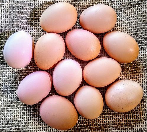 Ovos caipira orgânico (dúzia)