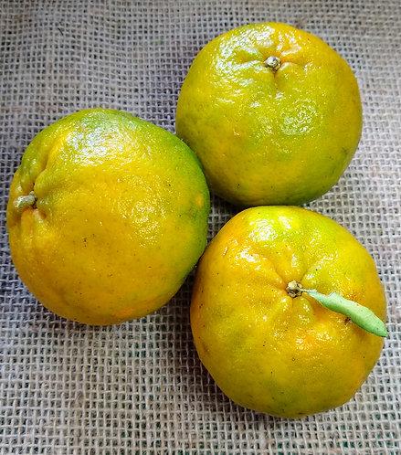 Ponkan orgânica (500g)