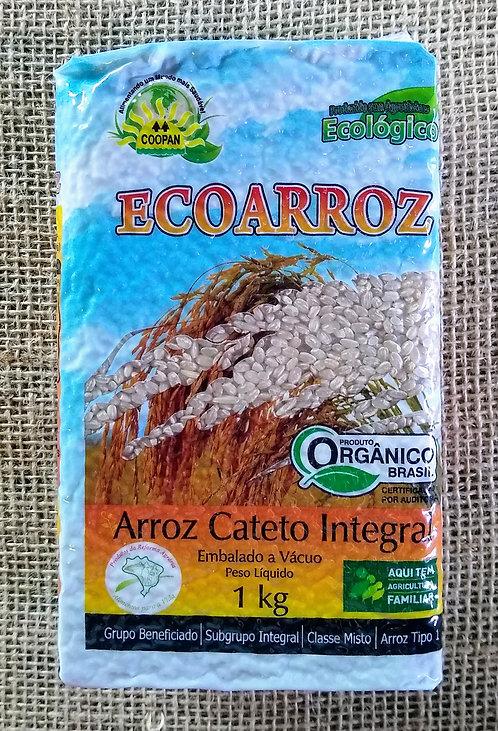 Arroz Cateto Integral orgânico embalado a vácuo (1kg)
