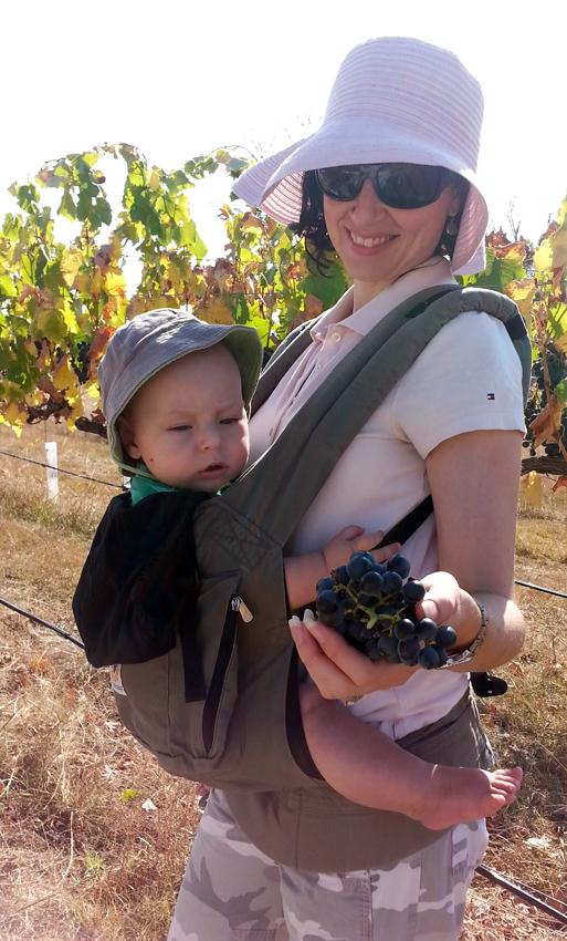 Harvest helpers