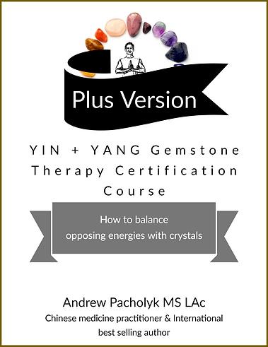 courses-yin-yang-PLUS.png