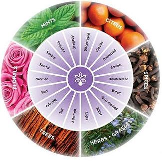 aroma-circle.jpg