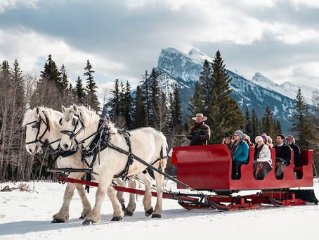 Banff Christmas Market is cancelled