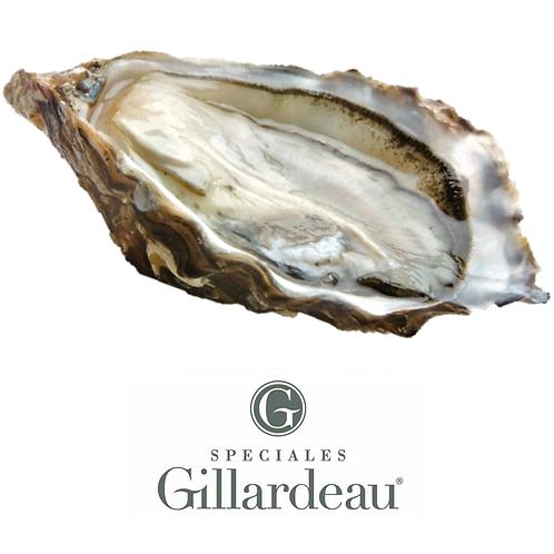 Gillardeau Special Oyster Nr. 1 (120-150g)