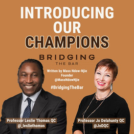 Bridging the Bar Launch Article: Introducing our Champions