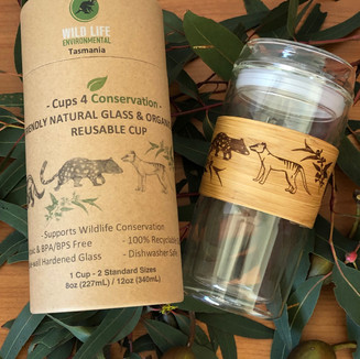 GLASS & BAMBOO ECO CUPS