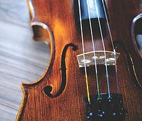 バイオリン,教室,大人