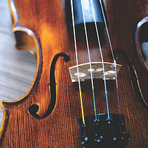 Leeds private tutor violin Parts of a violin wider opportunities schools