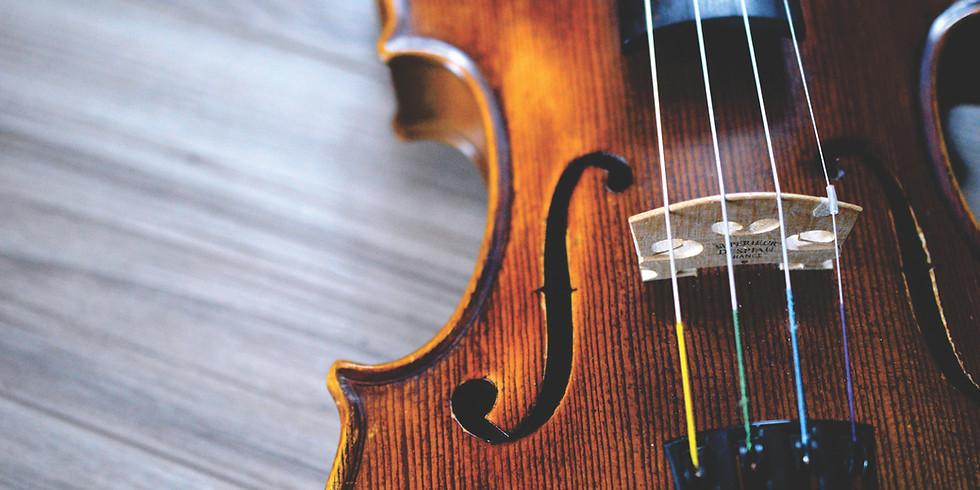 Violin Taster