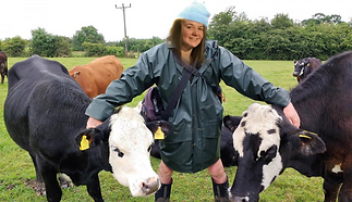 Jay with cows.PNG