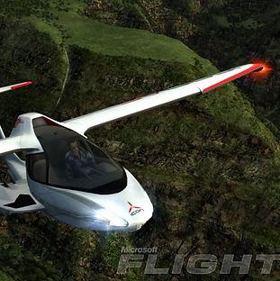 11_Microsoft Flight_b.jpg