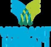 VH20001_Brand_Logo_Final_Verticle.webp