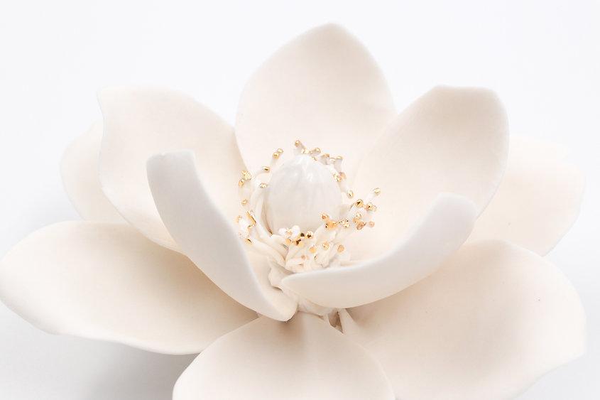 porcelain-golden-magnolia.jpg