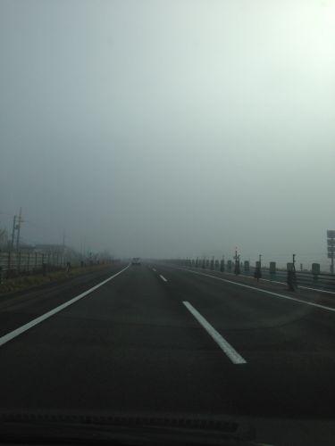 霧の濃さがいまいち伝わらない写真です(笑
