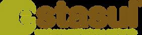 Logo Estasul_Sondagens_edited.png