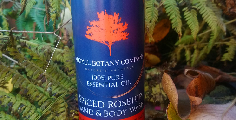 Spiced rosehip hand & body wash