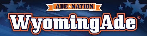 10 Pack of AdeNation™ Hydration Stick -WyomingAde™