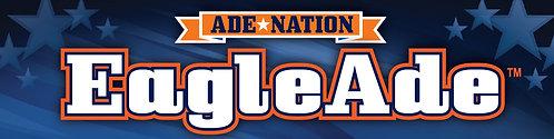 10 Pack of AdeNation™ Hydration Stick -EagleAde™