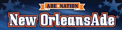 10 Pack of AdeNation™ Hydration Stick -New OrleansAde™