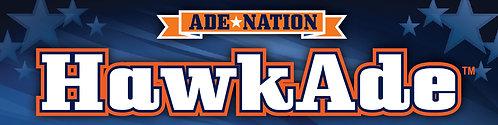 10 Pack of AdeNation™ Hydration Stick -HawkAde™