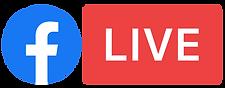 concerts diffusés en live sur facebook et youtube a la raskette au port de commerce a brest