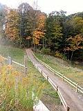 Wayne National Forest.jpg