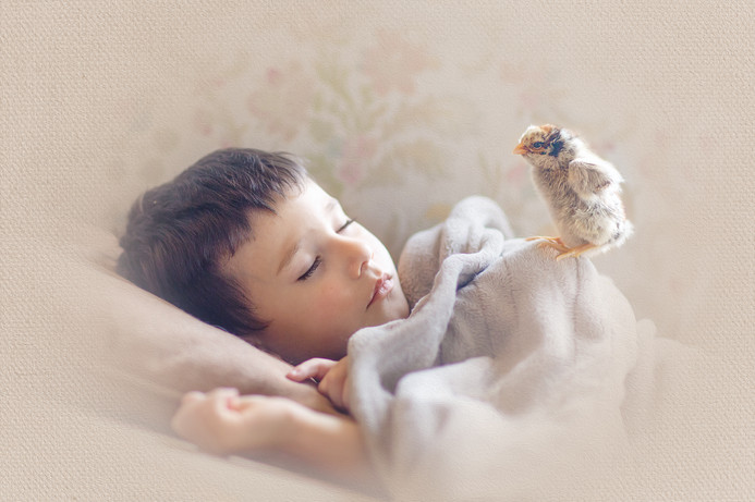 sleepingchick (1 of 1).JPG