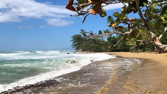 Caribbean Delights of Puerto Rico and Miami 11 Days