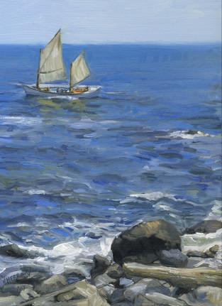 Sailboat - Study