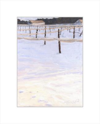 #39 - Snowy Tobacco Field