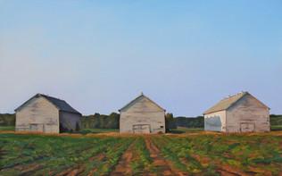 #46 - Three Barns