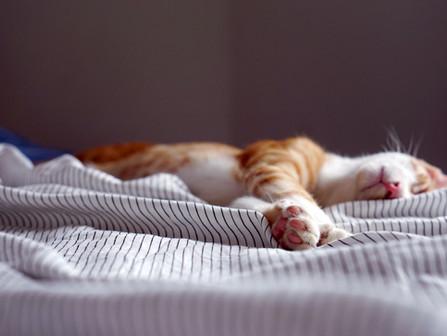 Herääminen