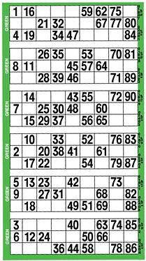 bingo%20flyer_edited.jpg