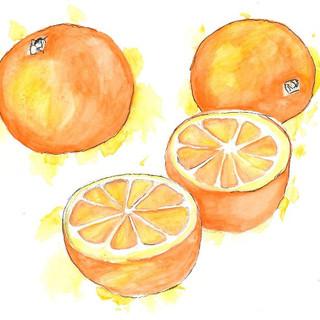 Watercolour Oranges