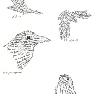 Crow Poems