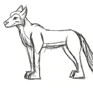 Channon the Wolf Character Design